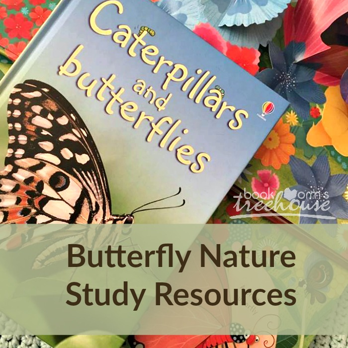 butterfly nature study social media